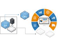 Web 系統開發及維護