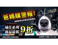 Banner廣告設計-藝手龍 藝術工作室