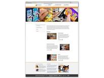 Responsive WordPress