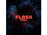 FLASH VISUAL